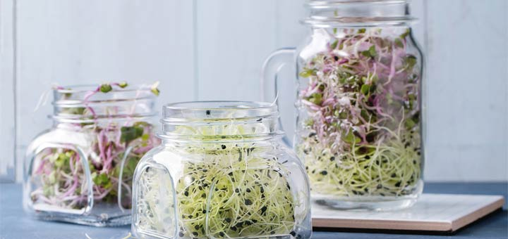 Pineapple Sprouts Explosion Salad