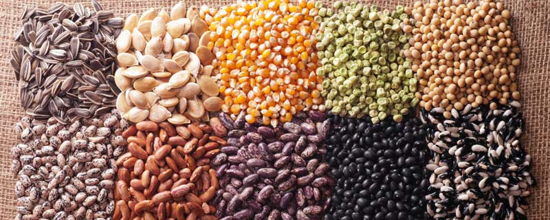 grains-and-seeds
