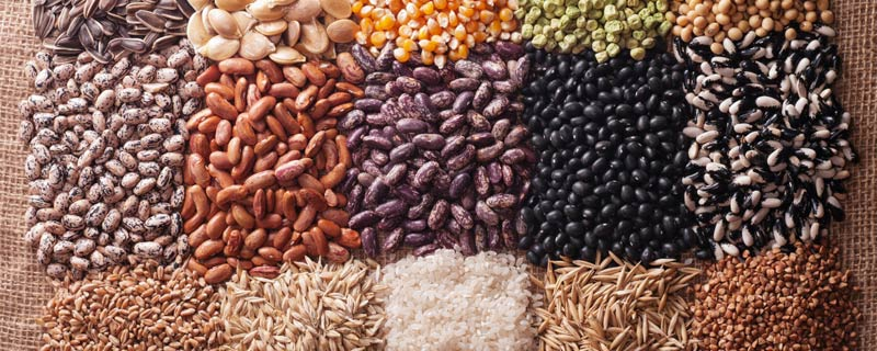 seeds-and-grains