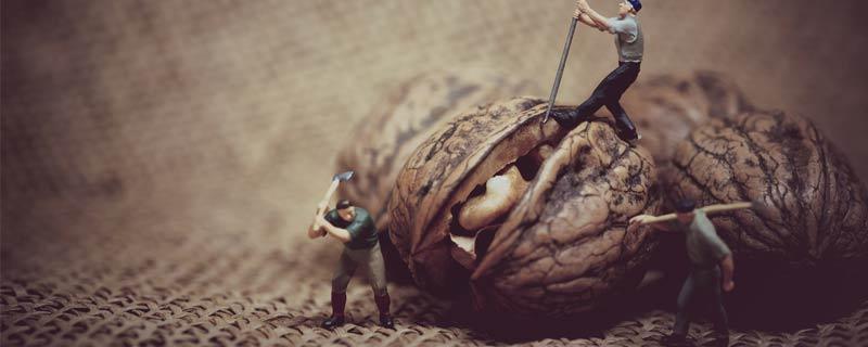 walnut-workers
