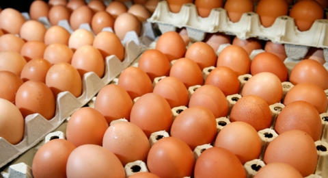 The Dangers of Egg Consumption