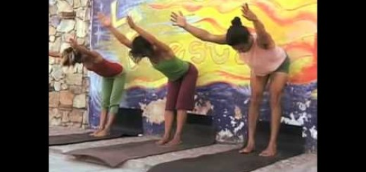 "Free Fun Hatha Yoga Class – Monday – ""Same but Different"""