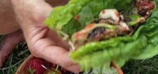 People Eating Raw Vegan Dinner