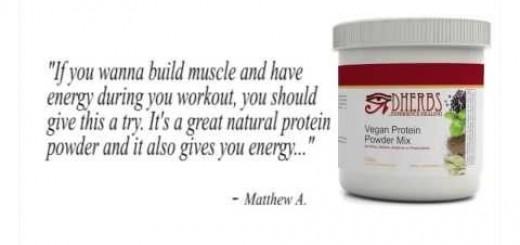 Dherbs Vegan Protein Powder Mix