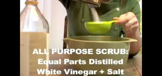 How to Make Organic Cleaning Supplies, Threadbanger
