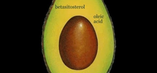 The Ten Powerful Benefits Of Eating Avocado's