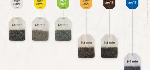 How To Properly Brew Tea in One Easy Photo
