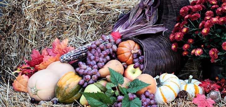 The 10 Most Nutritious Fruits And Vegetables Of Fall