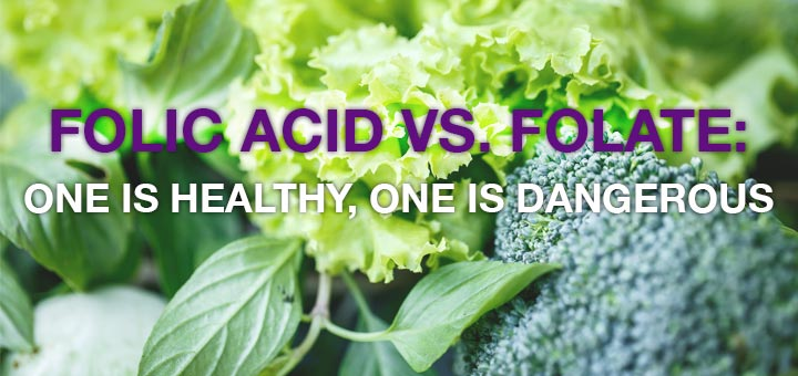 Folate and Folic Acid: Are They Both Created Equal?