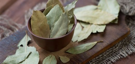 Burn A Bay Leaf In Your House And Watch What Happens