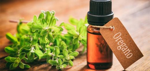 Oregano Is More Than Just A Spice…It Can Do This