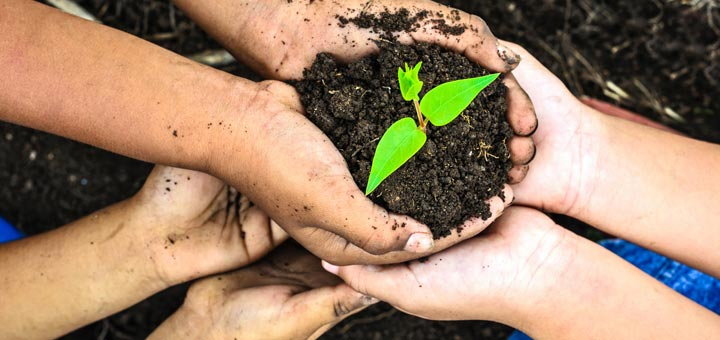 Let's Celebrate Earth Day 2017