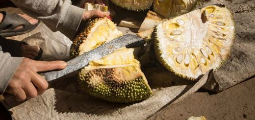 Jackfruit Has Some Powerful Healing Properties You Need ASAP
