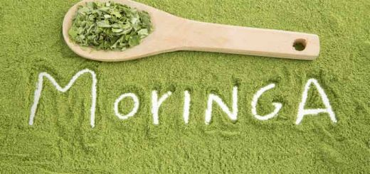 Moringa: The Herb That Helps To Kill Cancer