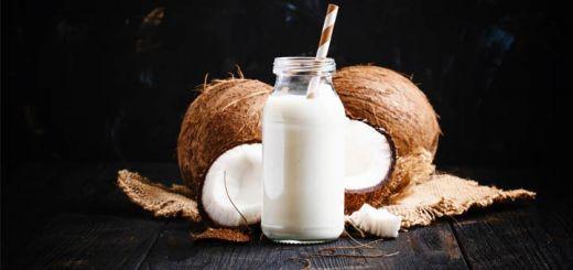 Raw Coconut Milk Recipe
