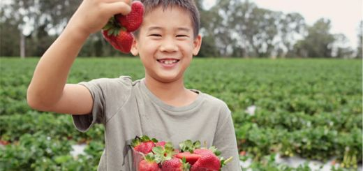 5 Berry Delicious Recipes For National Strawberry Day