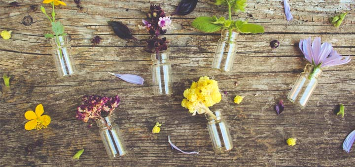 Avoid Chemical Air Fresheners With Natural Room Scents