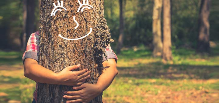 Release Your Inner Tree Hugger For National Love A Tree Day