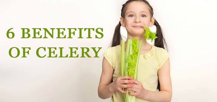 Here's Why Everyone Needs To Eat More Celery