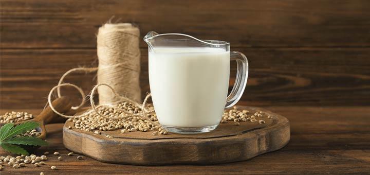 Homemade Hemp Milk