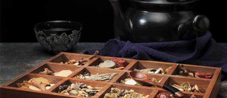 The Magical Health Properties Of Medicinal Mushrooms