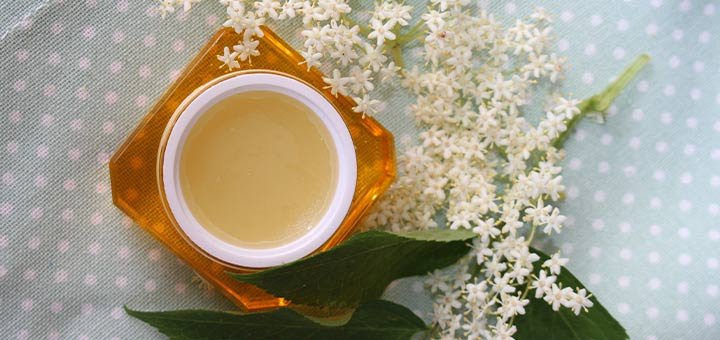 Anti-Aging Elderflower Salve To Improve Skin Elasticity