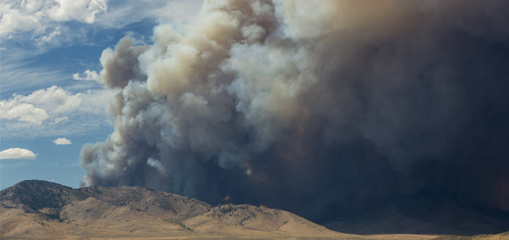 This Is What Wildfire Smoke Does To Your Lungs