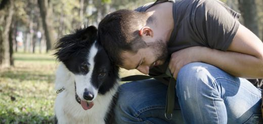 The Power Of Pets: 4 Ways They Improve Mental Health