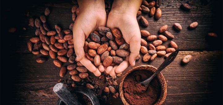 5 Health Benefits Of Raw Cacao Powder