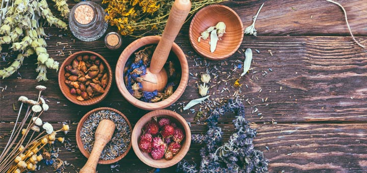 These 5 Herbs Are Incredible For Your Lungs