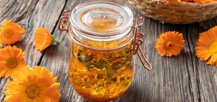The Health Benefits Of Calendula Oil