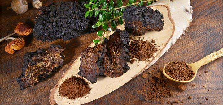 Fungi Facts: The Superfood Benefits Of Mushroom Powder