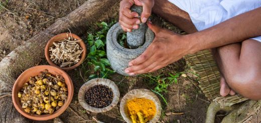 The Best Ayurvedic Herbs For A Healthy Thyroid