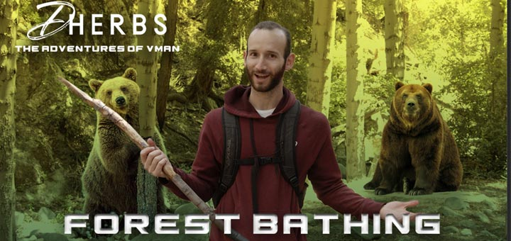The Adventures Of V-Man: Forest Bathing