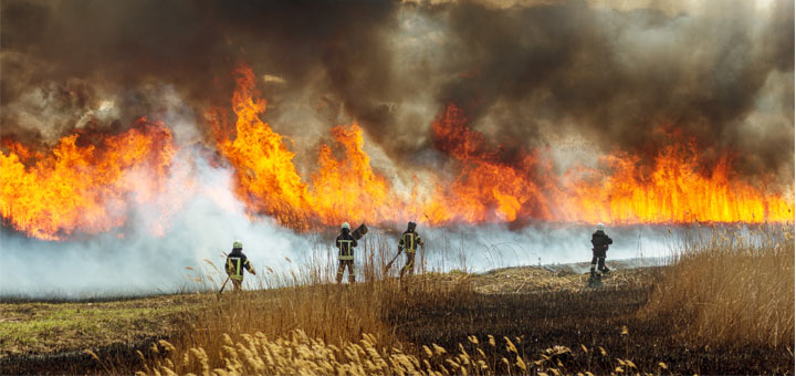 Wildfire Smoke May Increase COVID-19 Cases