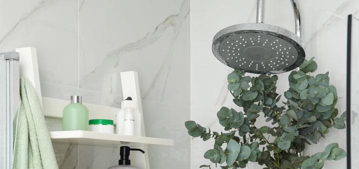 DIY Eucalyptus Aromatherapy Shower Steamers