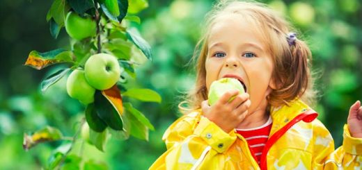Apples 101: Nutrition And 4 Health Benefits